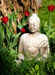 buddha_buddhism_religion
